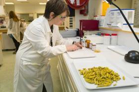 实验室专用超微粉碎机